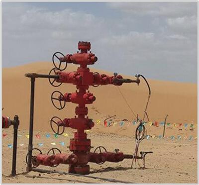 https://www.hcpetroleum.hk/imgs/products/wellhead_X-mas_tree_HC_Petroleum_Equipment_1.jpg